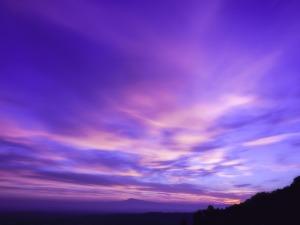 purple surise