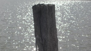 lake water 4