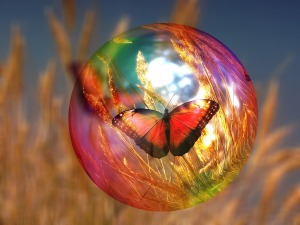 butterfly soapbubble 2
