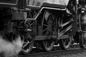 train 5
