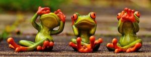 frogs see hear speak